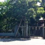 河内国一之宮「枚岡神社」に行ってきました