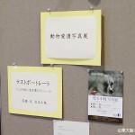HWJ東大阪 「児玉小枝 写真展 ラストレポート ~この世に生を受けて~」