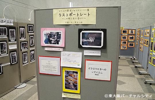 府立中央図書館で動物愛護写真パネル展が開催中